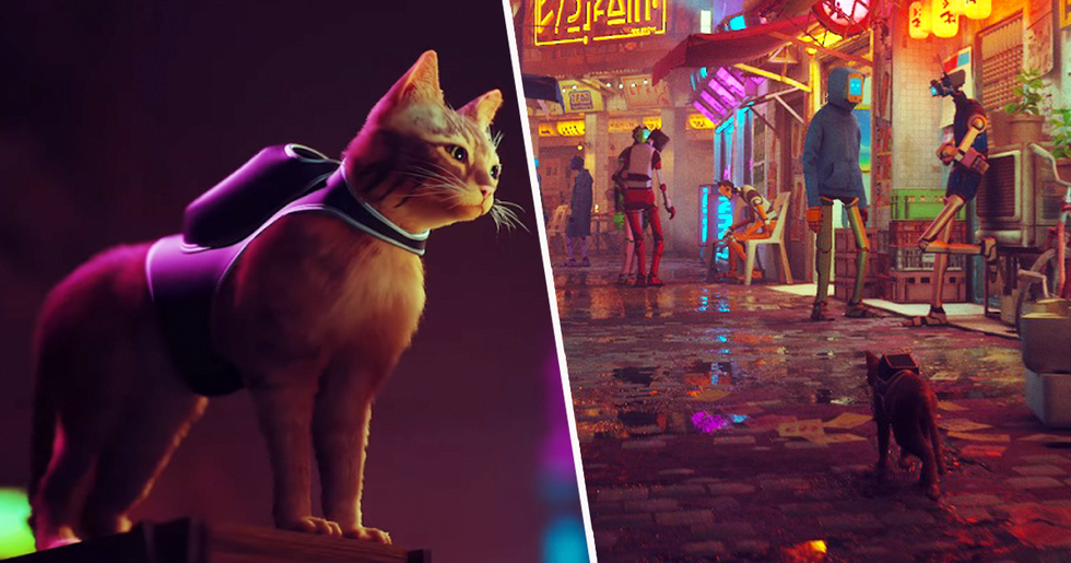 New PlayStation 5 Game Lets You Play as Mystery Solving Cat