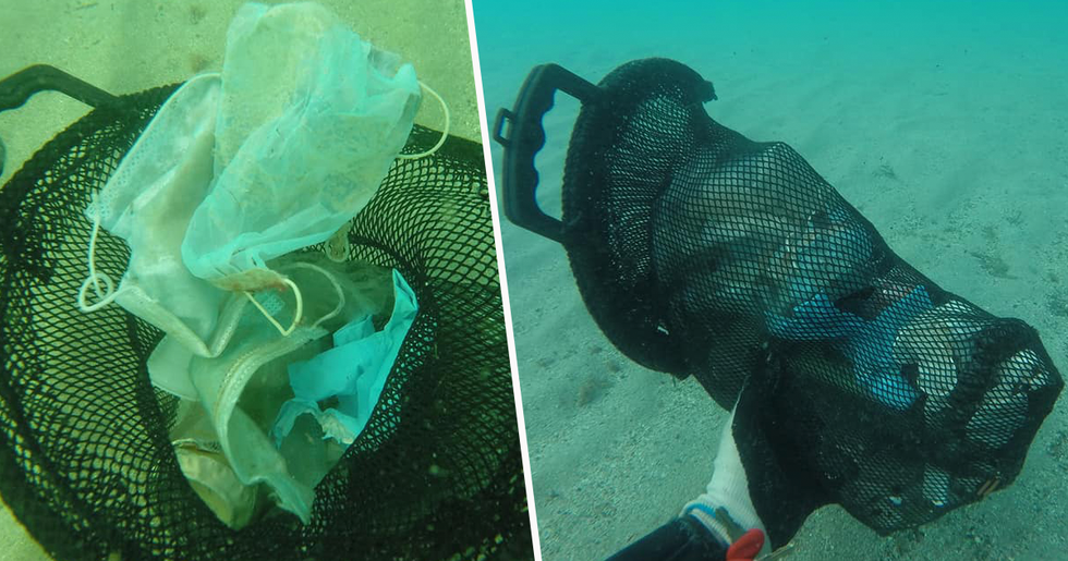 Disposable Masks Are Now Littering The World's Oceans