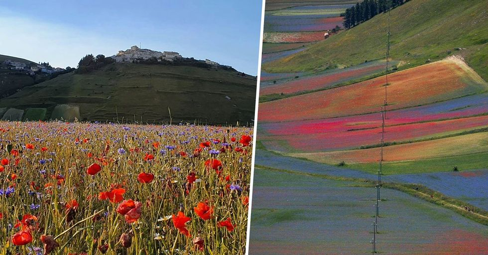 Italian Village Is Entirely Surrounded by Wildflowers