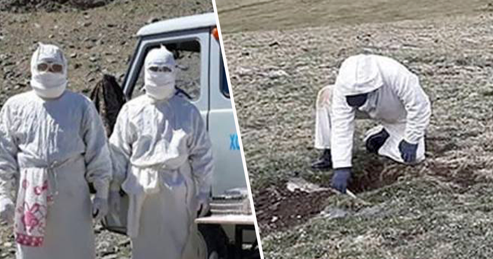 Boy Dies Aged 15 From the Bubonic Plague Following Outbreak