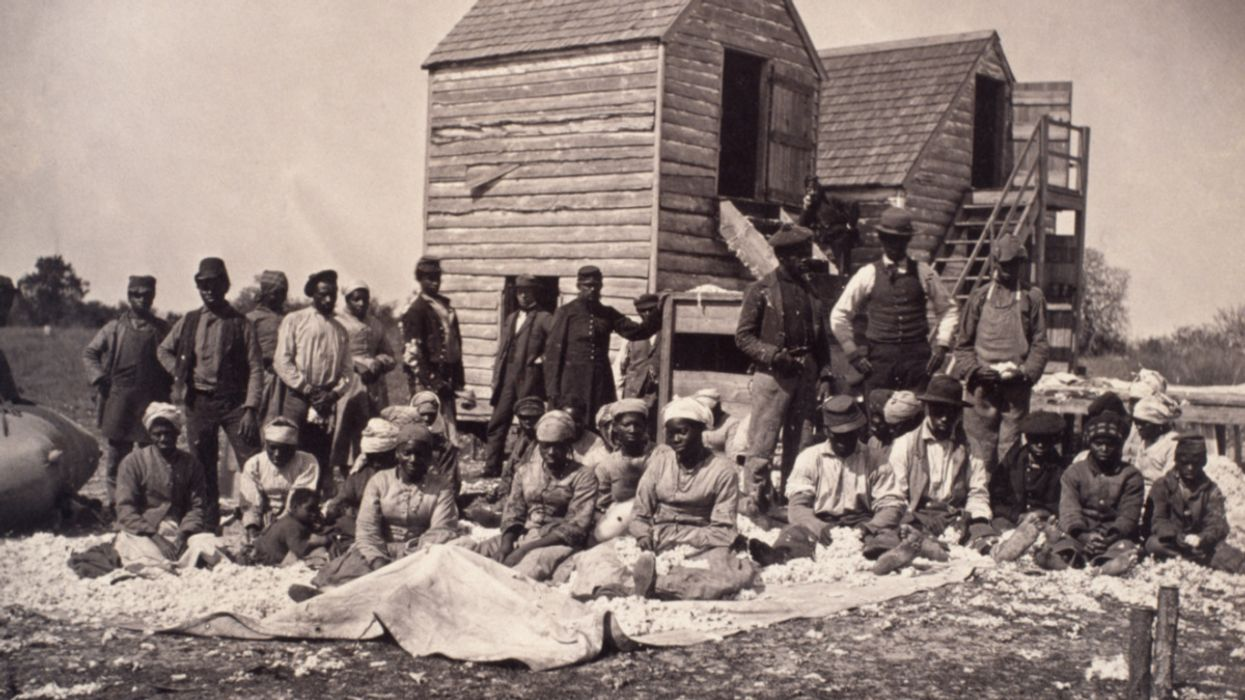 Land Loss Has Plagued Black America Since Emancipation, but Collective Ownership Offers a Solution