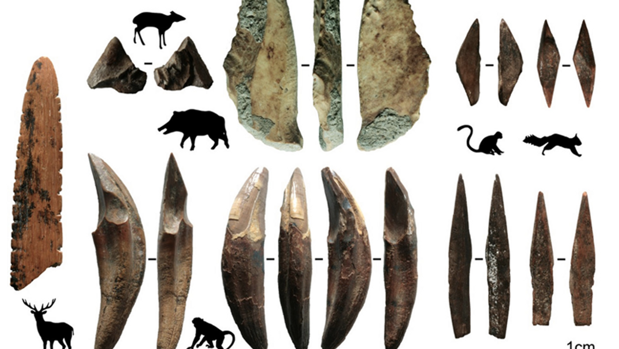 assortment of bone arrowheads and tools