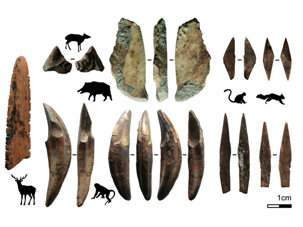 48,000-year-old bone arrowheads and jewelry discovered in Sri Lankan cave
