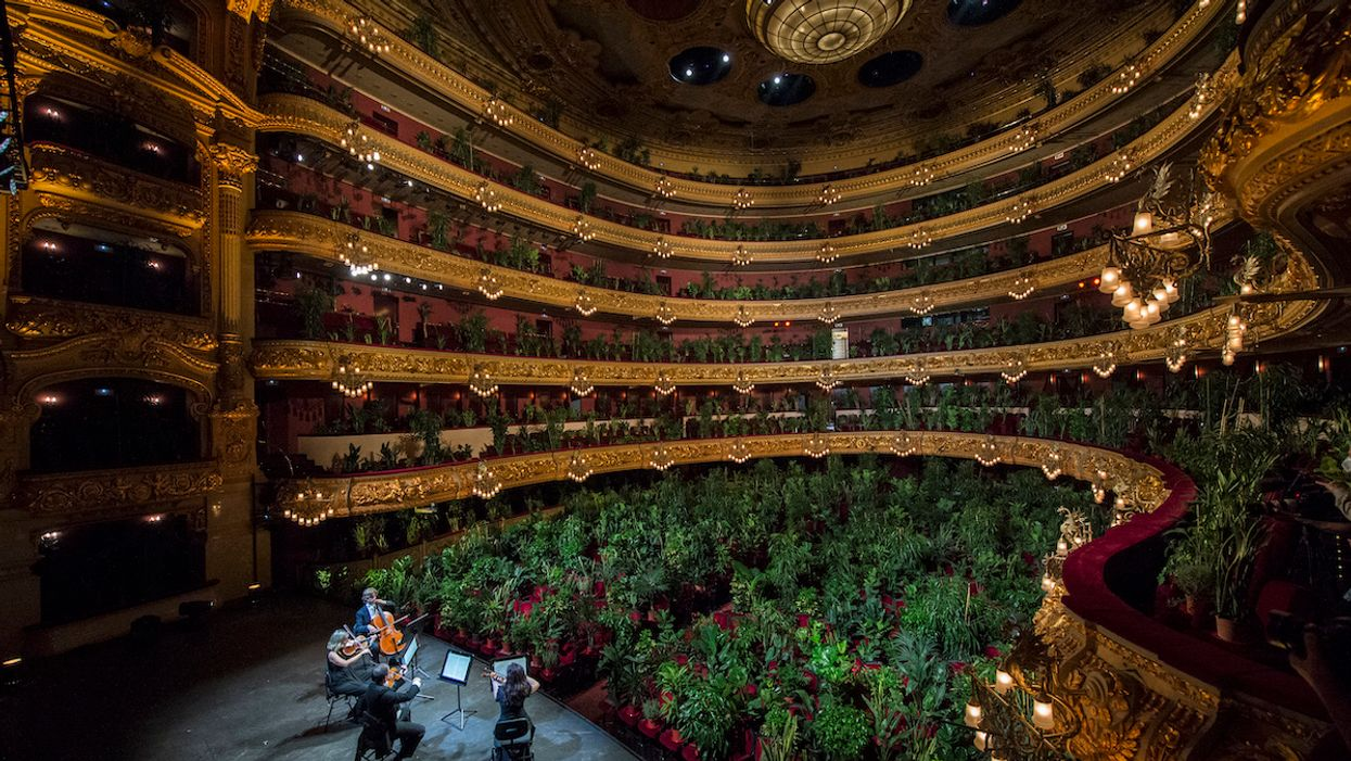 Barcelona Opera House Reopens With Concert for 2,292 Plants