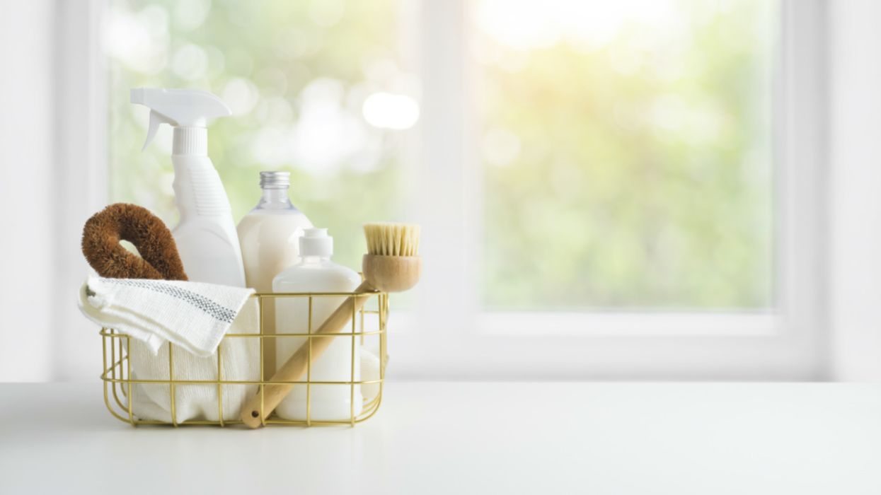 The 13 Best Organic and Eco-Friendly Cleaning Products of 2020