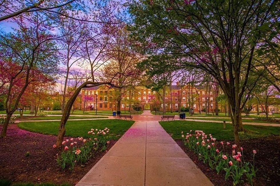 10 Things Incoming Freshmen Can't Learn About Miami University On A Zoom Call This Fall