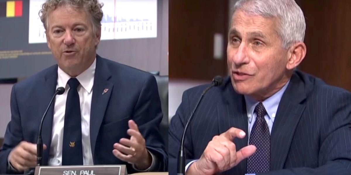 Rand Paul berates Dr. Fauci over the politicization of the coronavirus response