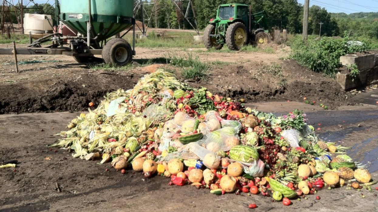 How COVID-19 Creates Food Waste Mountains That Threaten the Environment