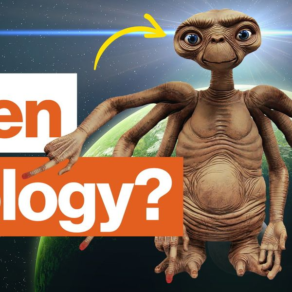 The biology of aliens: How much do we know?