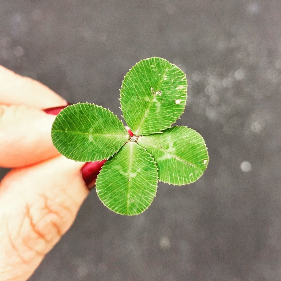 15 Things You Didn't Know About Four-Leaf Clovers