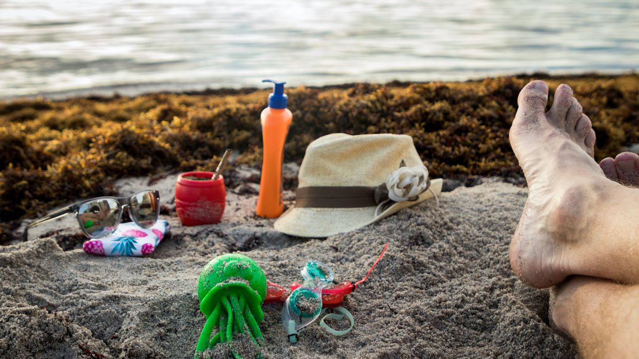Florida Gov. DeSantis Prohibits Cities From Banning Sunscreens, Even Ones That Harm Coral