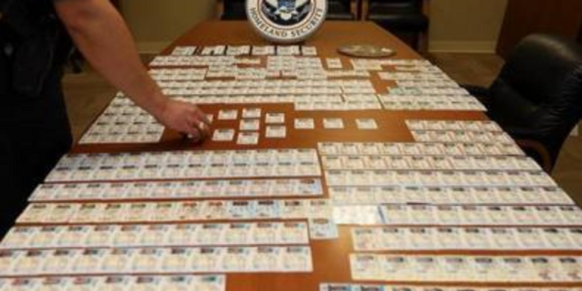 Nearly 20,000 fake US driver's licenses from China and other countries seized at Chicago airport