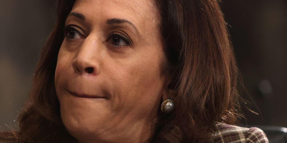 FLASHBACK: VP pick Sen. Kamala Harris: I 'believe' Biden accusers