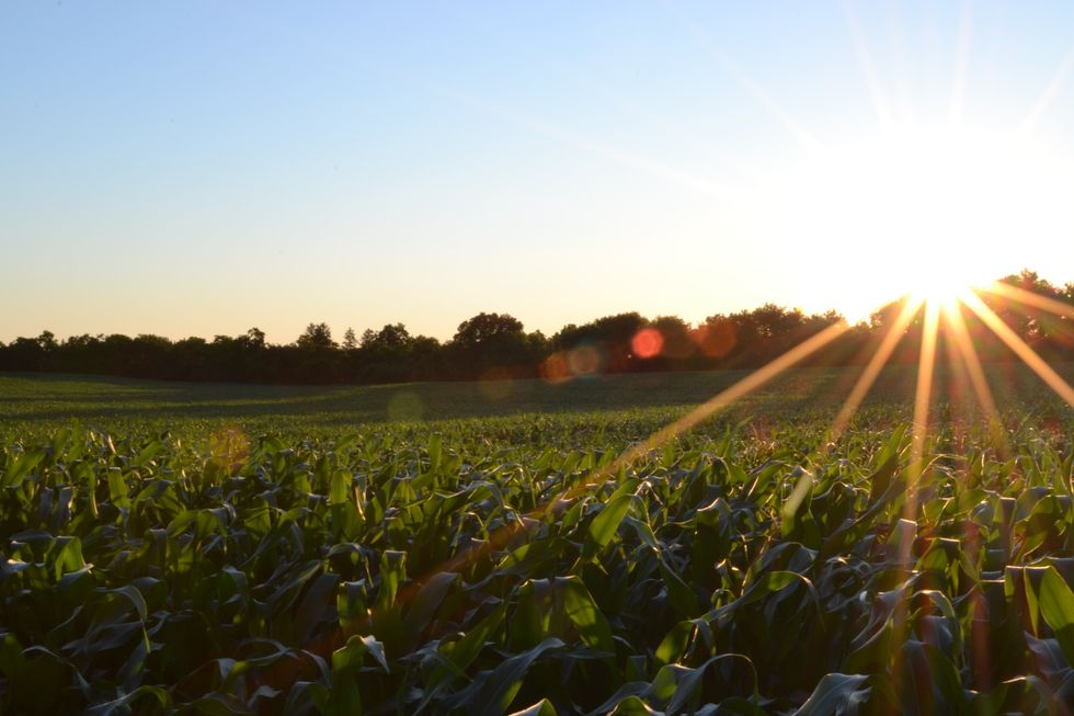 10 Things I've Learned At My Grandparent's Farm