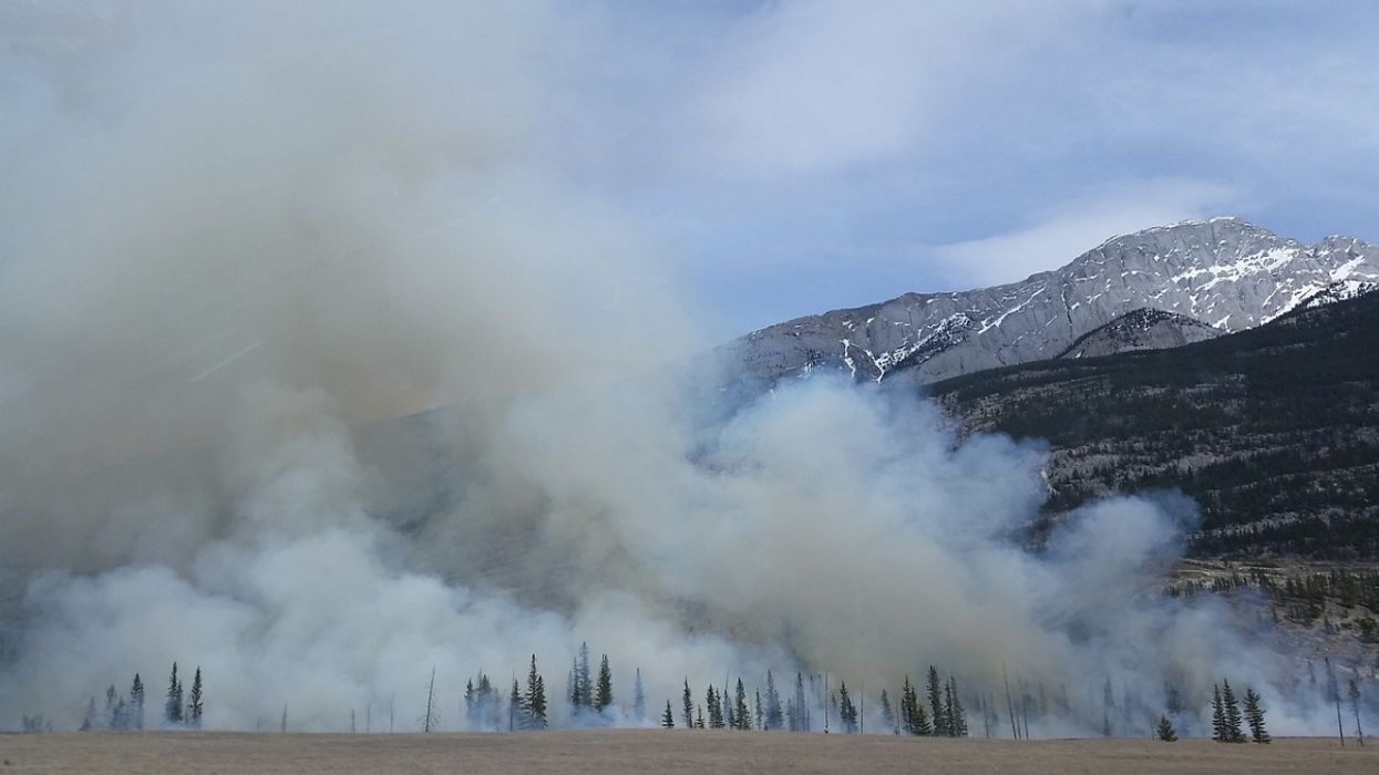 What's in Wildfire Smoke, and How Bad Is It for Your Lungs?