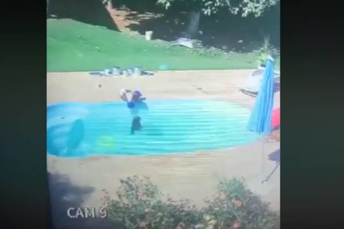 Dramatic security footage shows a three-year-old boy heroically saving his drowning friend