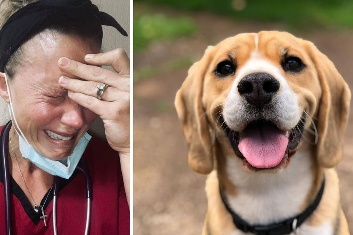 In a tearful post, a veterinarian shares just how emotionally draining the job really is.