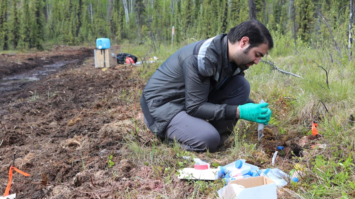 Climate Crisis Could Change Permafrost Soil Microbes, With 'Unknown Consequences' for Arctic Ecosystems, Scientists Say