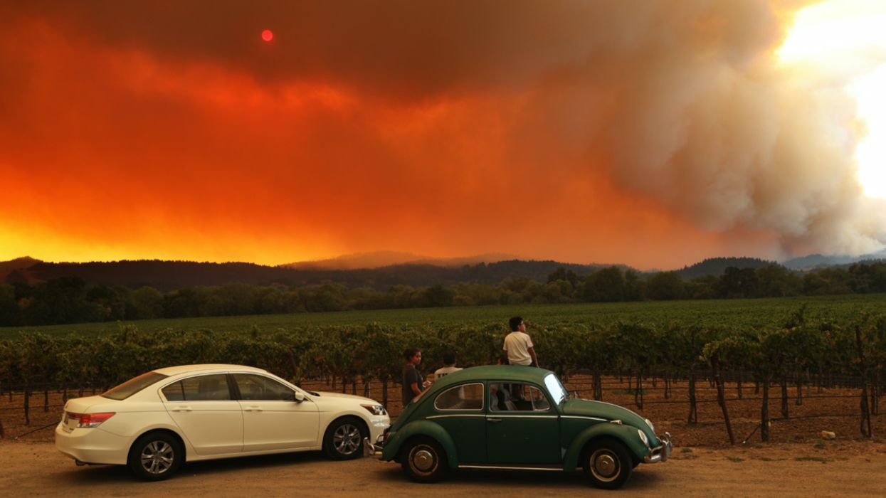 Trump Admin Proposes 'Vicious' Plan for Fossil Fuel Lease Sales in California Amid Historic Wildfires