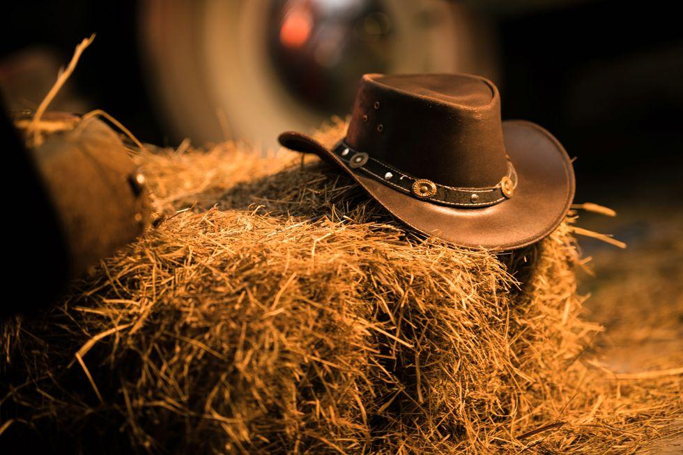 Palm Leaf Cowboy Hat