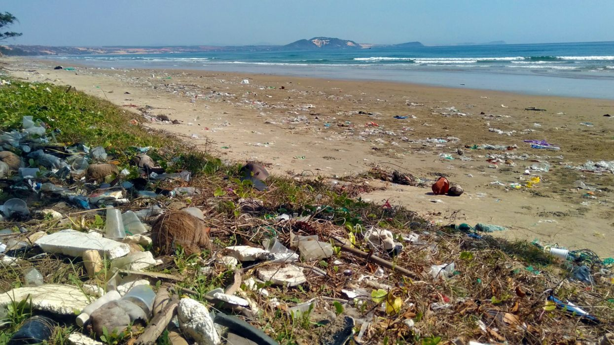Ocean Plastic Could Triple by 2040, Report Finds