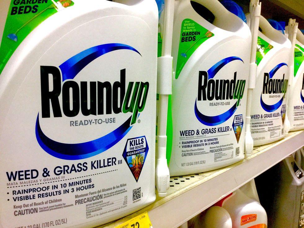 Bayer Monsanto Roundup