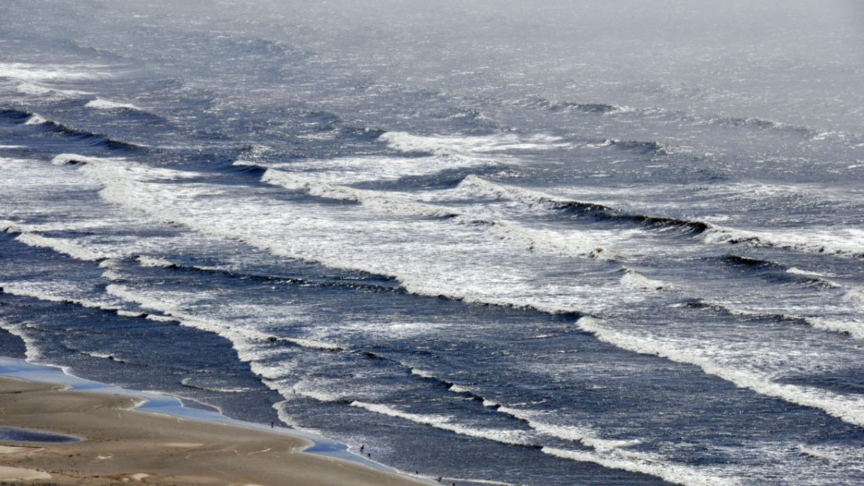 Ocean Acidification Threatens Entire Ecosystems