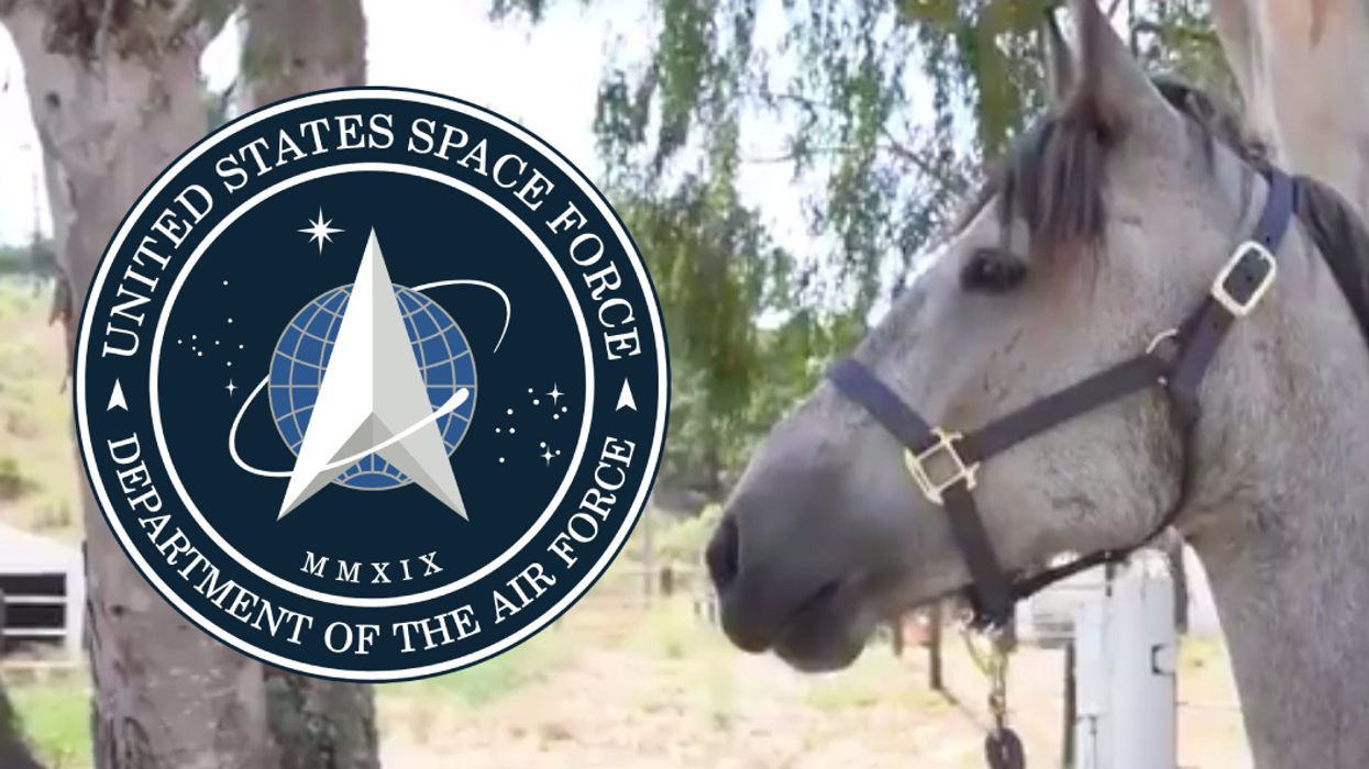 Space Force logo and Ghost the horse