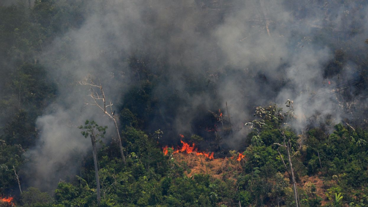 Amazon Rainforest Fires in Brazil Surge in July