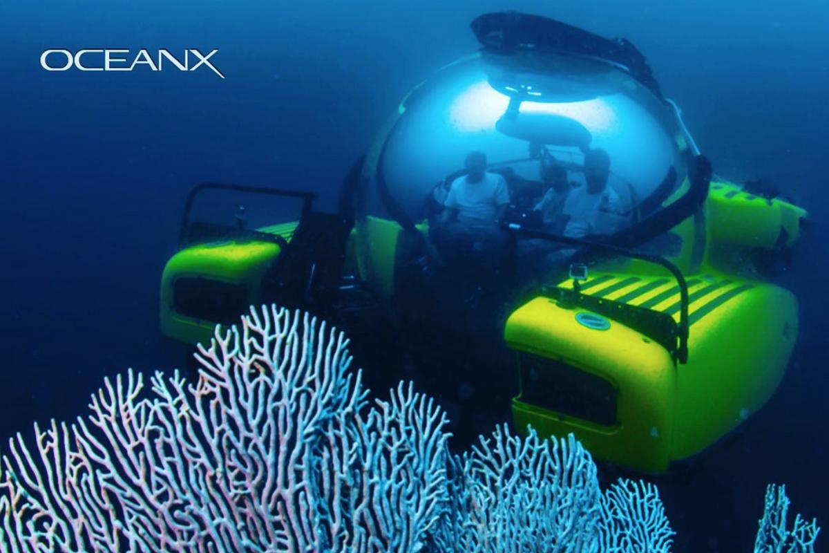 GOOD10 // The Oceans Issue // The Media: BBC & OceanX