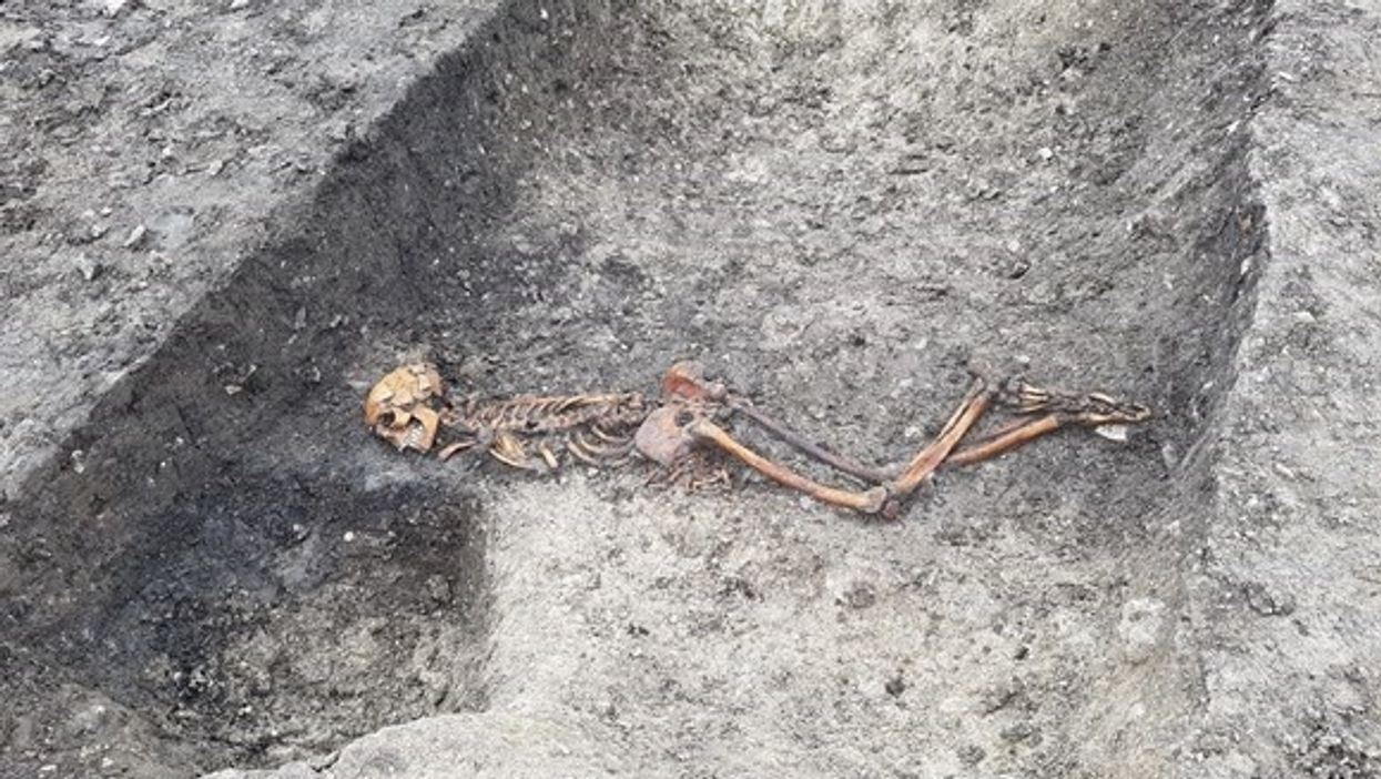skeleton lying face down in ditch