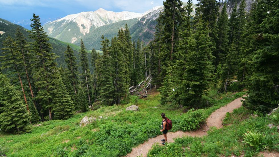 Trump Admin Proposes Drilling for Oil and Gas in National Forests