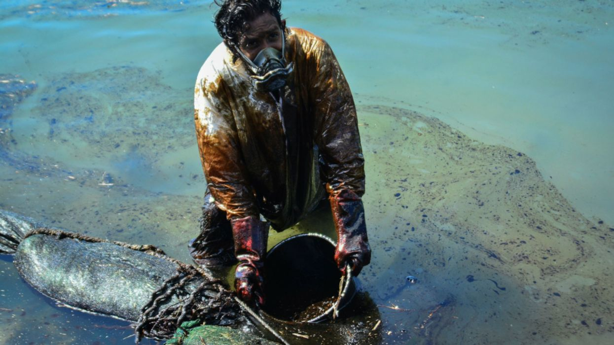 Mauritius Oil Spill: Japan Asked to Pay $34 Million for Recovery Efforts