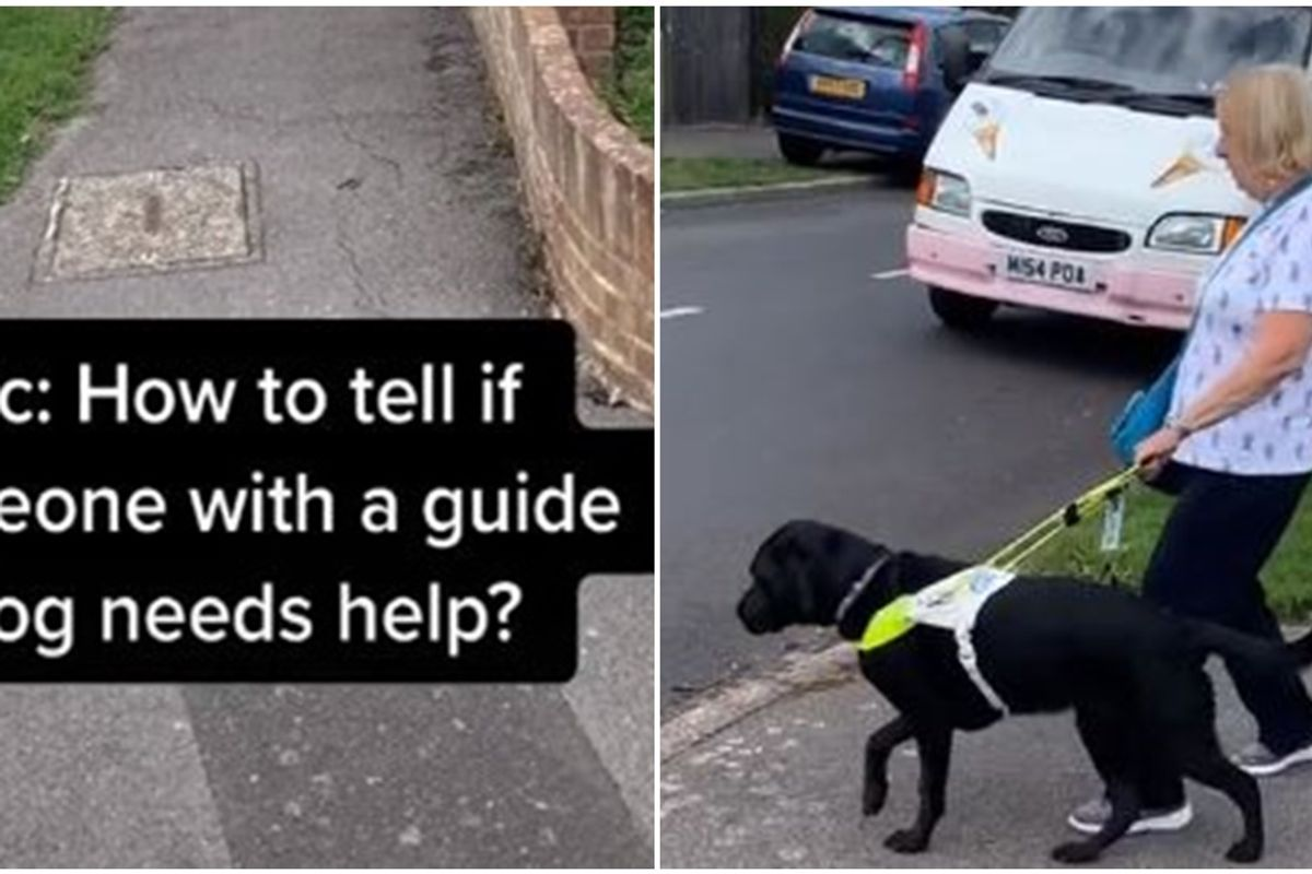 There's a signal blind people give if they need assistance. Here's how to lend a hand (when asked).