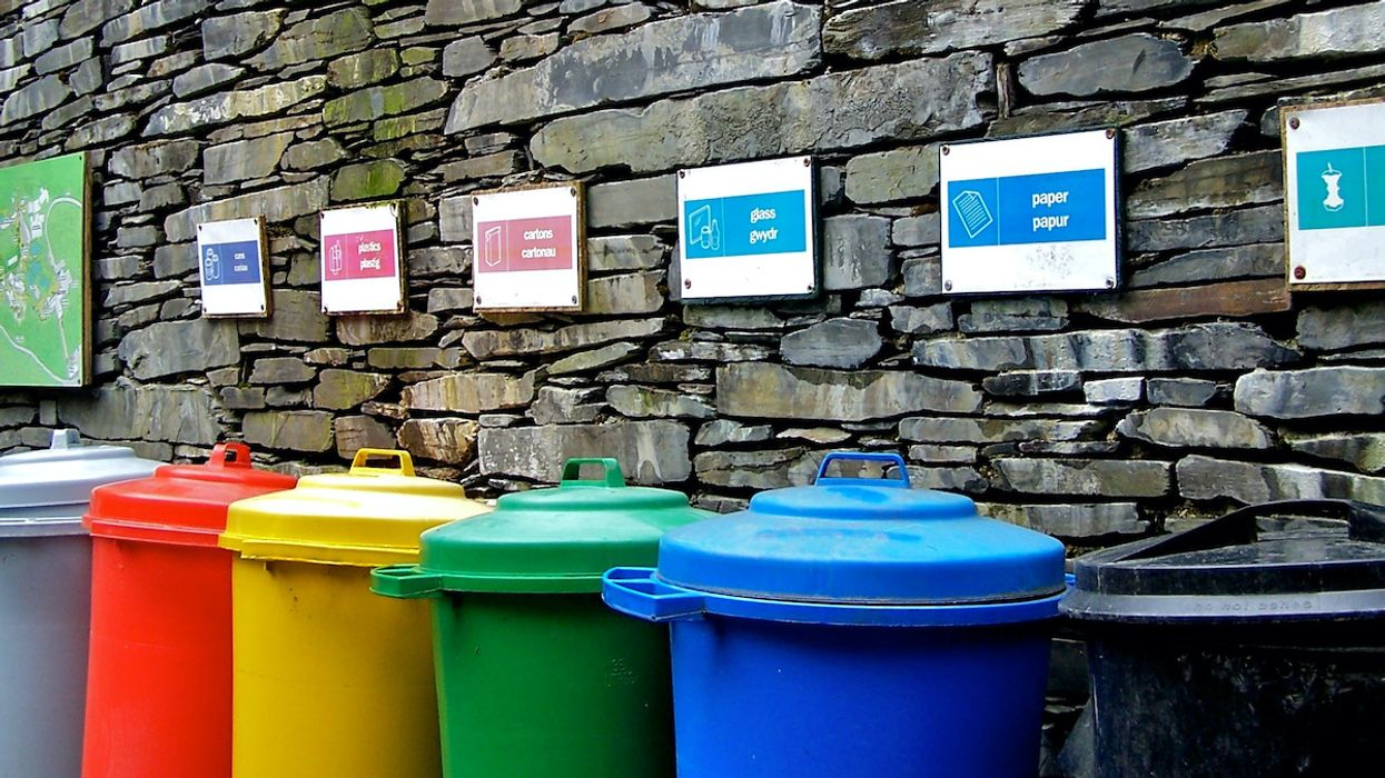What Happens to Recycled Plastic?Researchers Lift the Lid