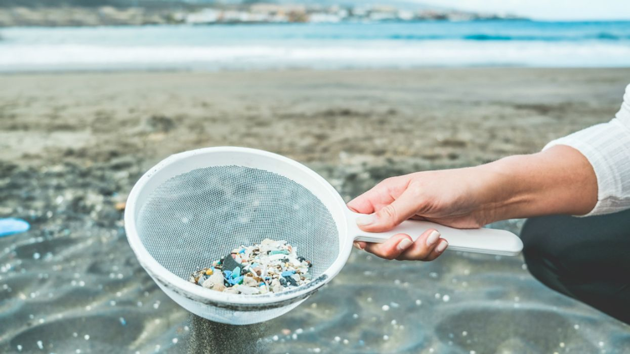 Paint: The Big Source of Ocean Microplastics You Didn't Know About