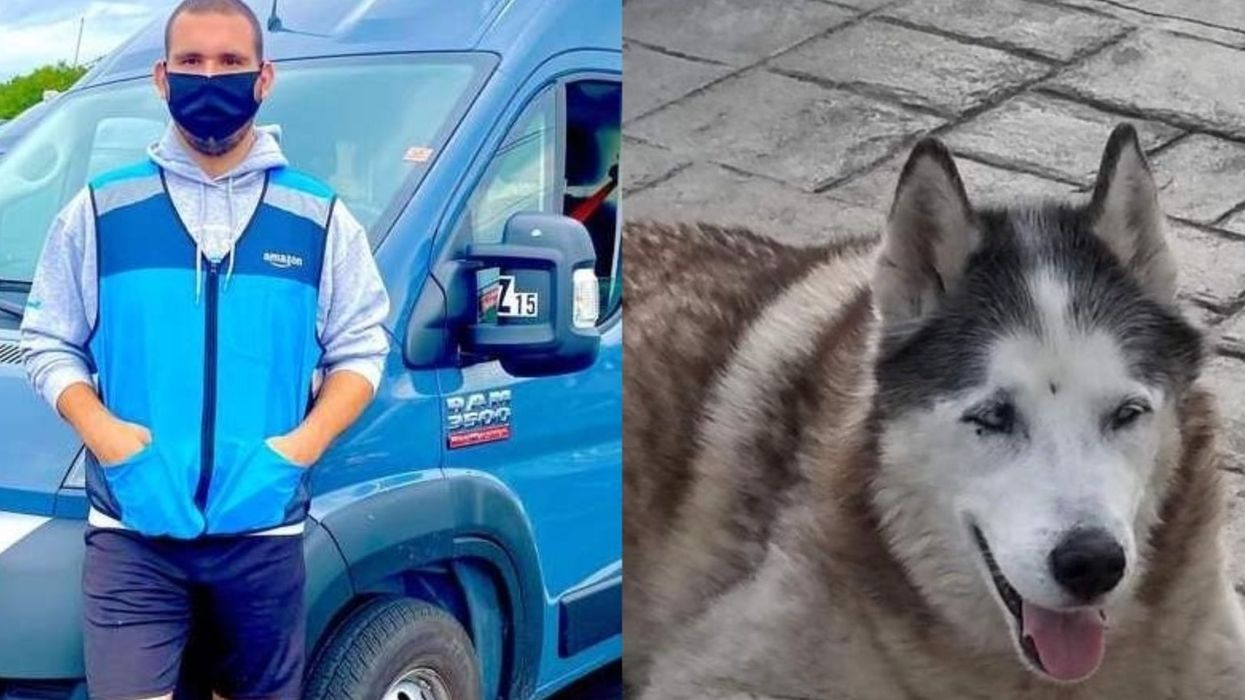 Talk About A Special Delivery! Hear How An Amazon Driver Saved A Dog From Drowning