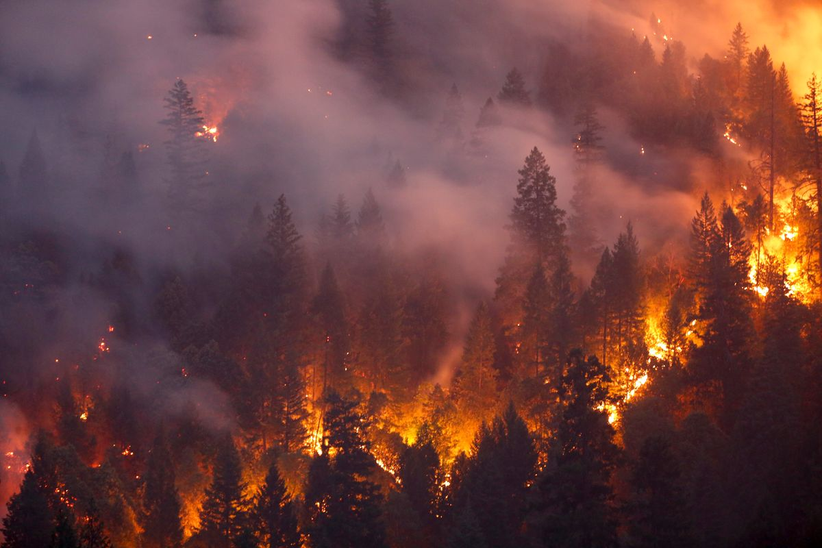 How to Help People Affected By the West Coast Wildfires