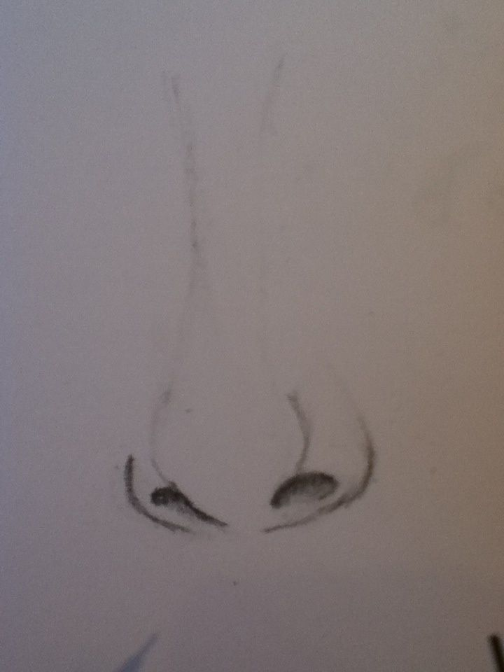 How To Draw A Nose B C Guides
