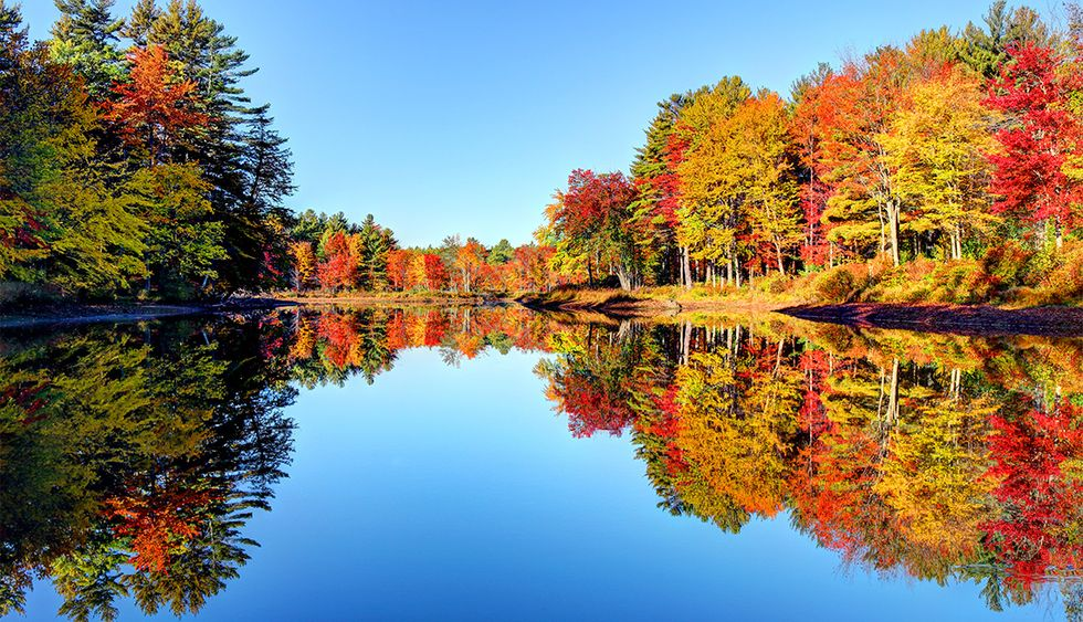 Why Fall Is The Superior Season.