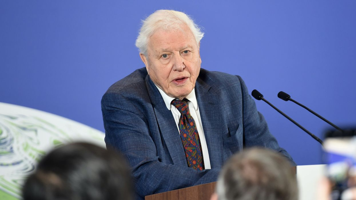 Climate Champion David Attenborough Breaks Jennifer Aniston's Instagram Record