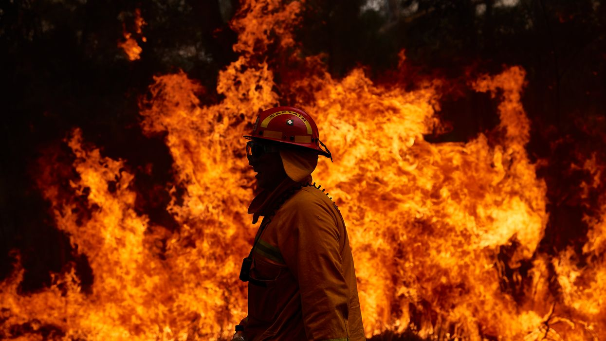 What causes wildfires and how can we prevent them?