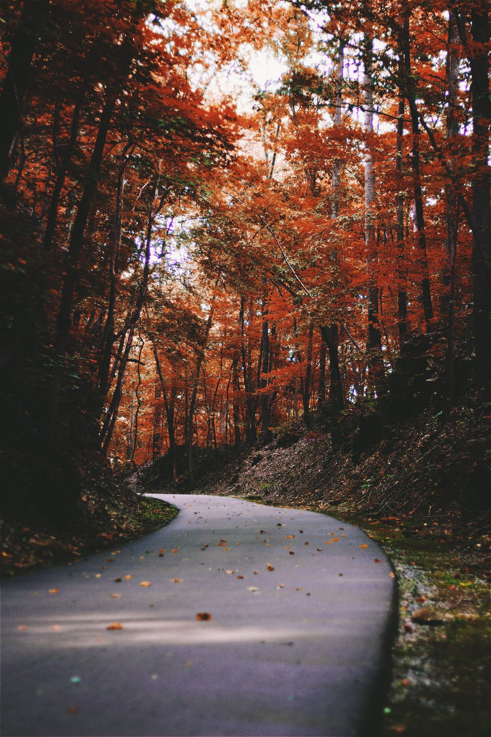 10 Songs To Add To Your Autumn Playlist