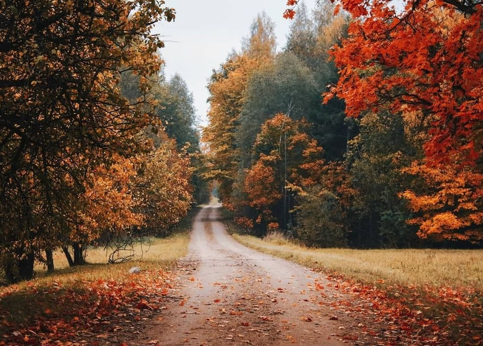 7 Reasons Why Fall Is The Best Season