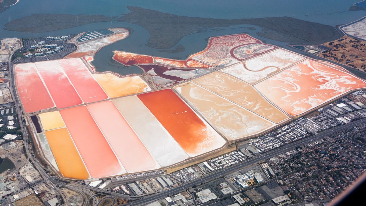 Judge Tosses EPA Plan to Dredge and Fill Bay Area Salt Ponds