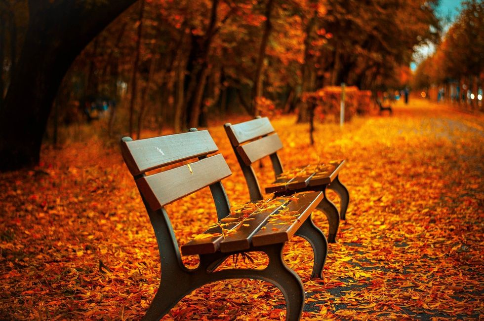 Fallin' in love with fall