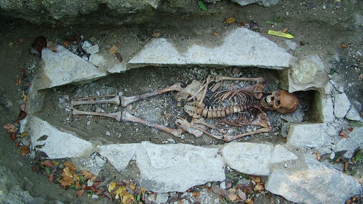 Viking burial