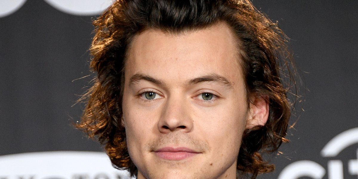 Harry Styles Will Reportedly Play a Gay Policeman in New Queer Drama