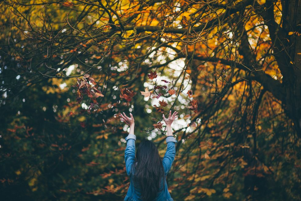 Crisp Days And Cool Nights: An Appreciation For Autumn
