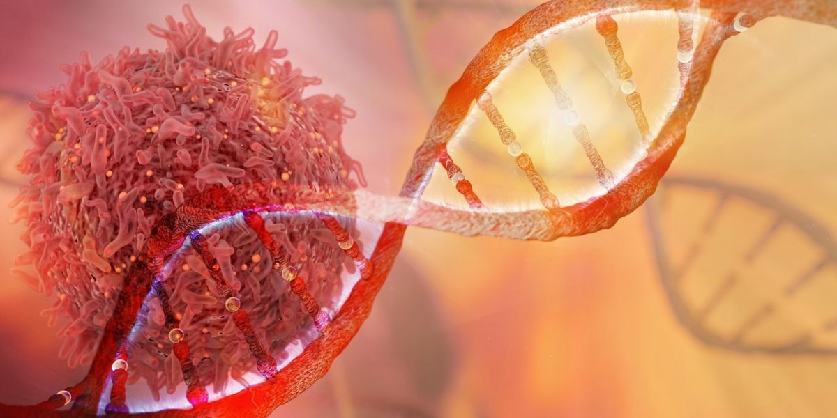 Study calls out the genes that make cancer cells so hard to kill